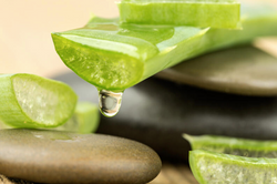 aloe benefits