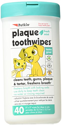 Petkin Toothwipes Dogs/Ca Size 40ct Toothwipes Dogs/Cats 40ct