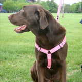 Hemp Dog Harness Pink Corduroy