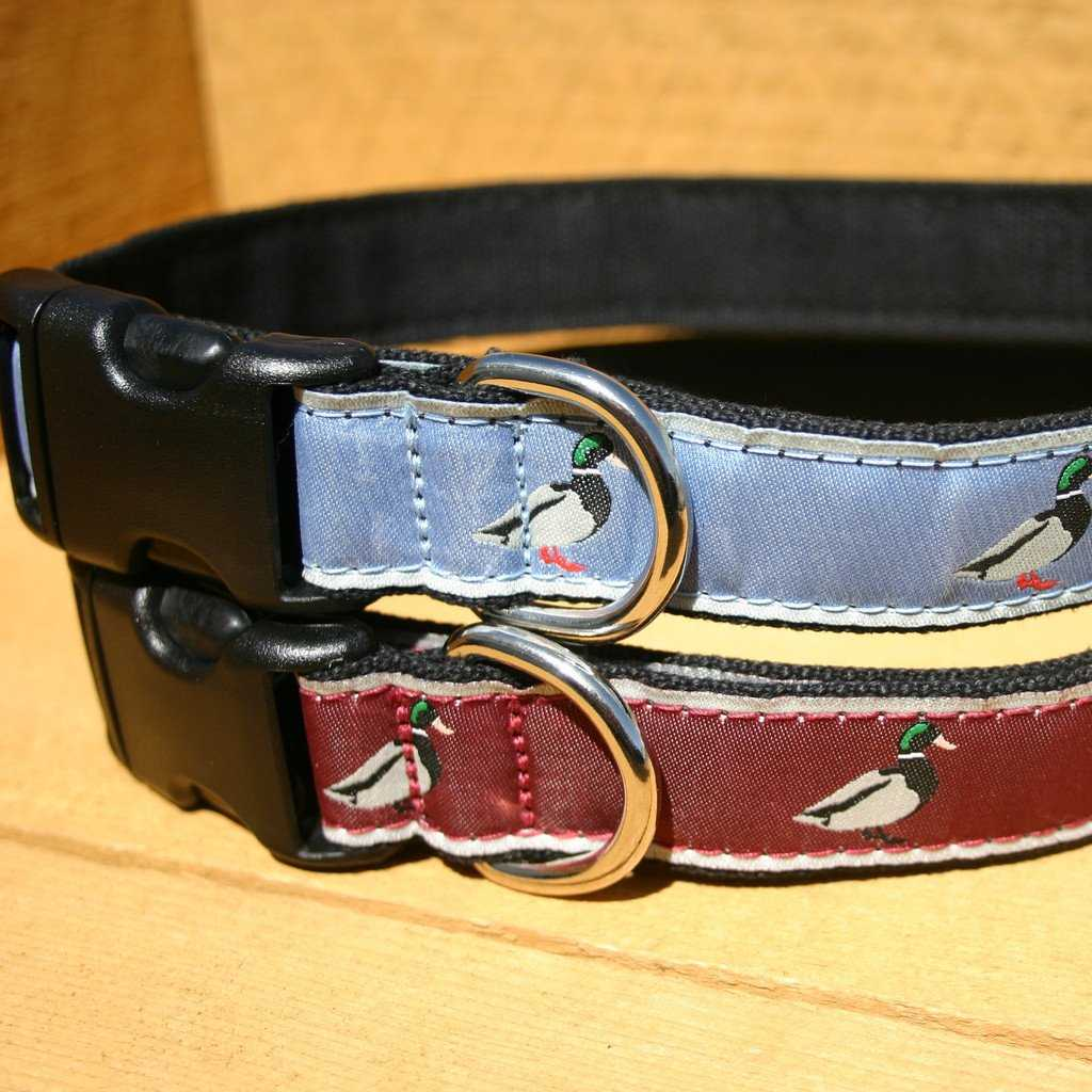 Hemp Dog Collar Conservation  Collection