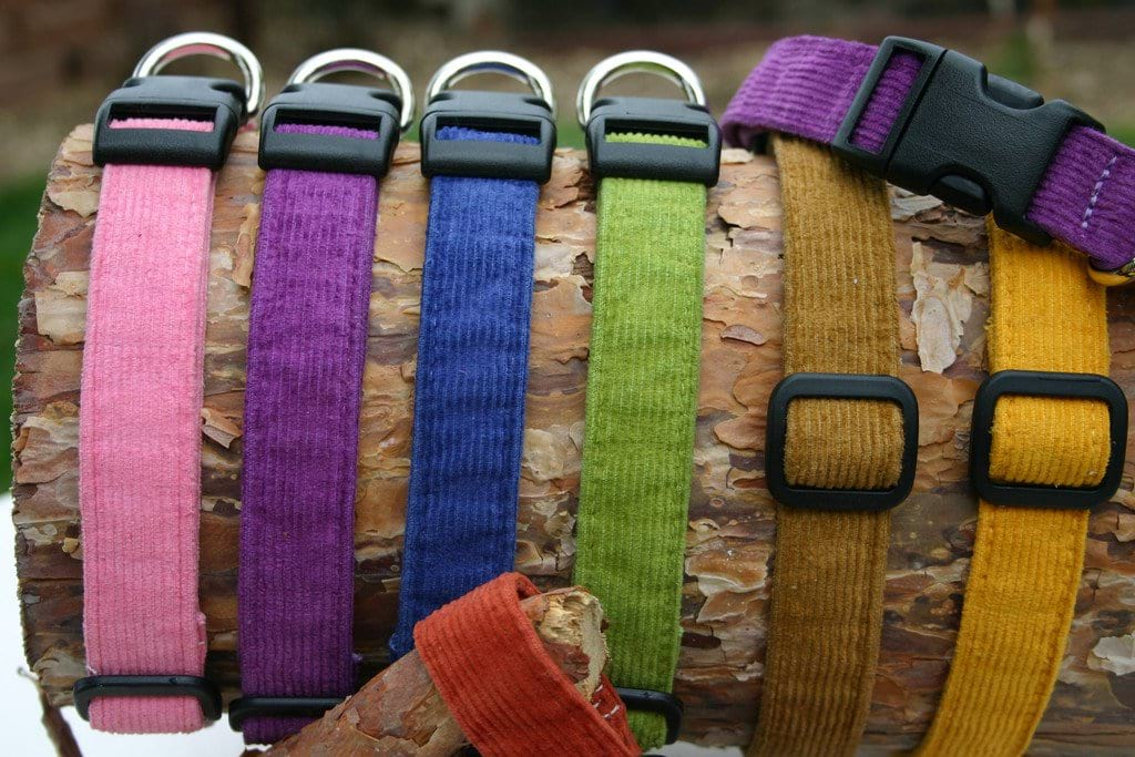 Hemp Dog Collar Corduroy Collection