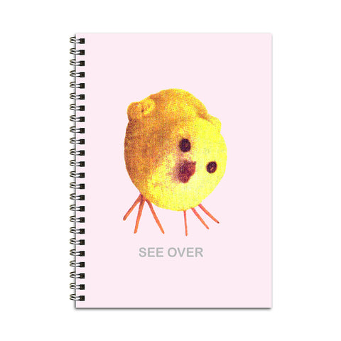 Chick & Egg Notebook