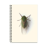 The Little Guy Notebook