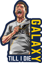 Load image into Gallery viewer, Galaxy Till I Die Sticker