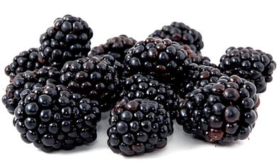 Berries Blackberry - 125g pnt