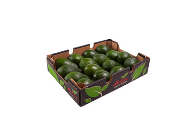 Avocado Pinkerton - tray 14s