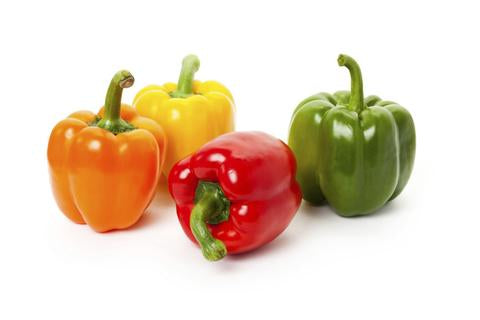 Capsicum Orange Mini - each