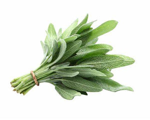 Herbs Sage - per bunch