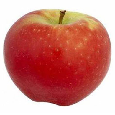 Apple Sundowner - per kg