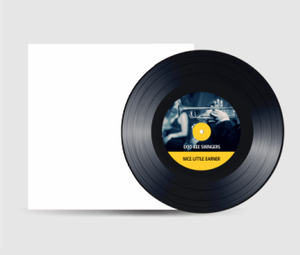 7 inch vinyl packaged in unprinted paper sleeve