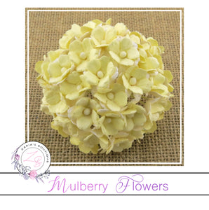 Mulberry Flowers ~ Sweetheart Blossom ~ 2-Tone Pale Yellow ~ 15mm