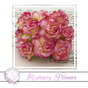 Mulberry Paper Flowers ~ Wild Rose ~ 40mm ~ 2 Tone Champagne Pink
