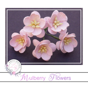 Mulberry Paper Cherry Blossoms ~ Pale Pink ~ 5 pieces