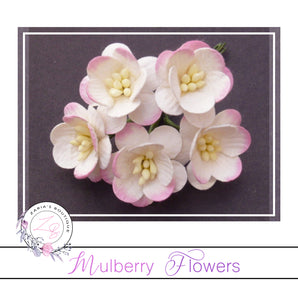 Mulberry Paper Cherry Blossoms ~ Two-Tone Ivory/Pink 5 pieces