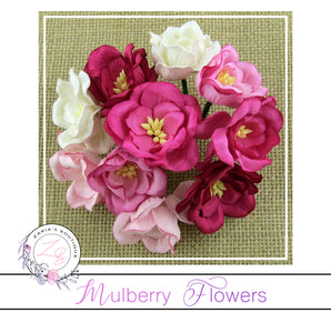 Mulberry Flowers ~ Magnolia ~ Pink Mix ~ 35mm