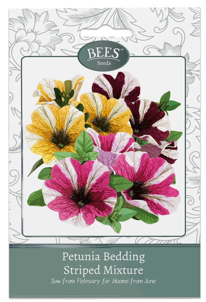 Petunia, Petunias, Petunia Seeds, Striped Petunias, Striped Petunia, Cottage garden seeds, Cottage garden plants, Bees Seeds