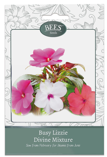 Busy Lizzie, Busy Lizzies, Busy Lizzie Seeds, Impatiens, Impatiens seeds, Busy Lizzie Divine Mixture, Impatiens Divine Mixture, Cottage garden seeds, Cottage garden plants, Bees Seeds
