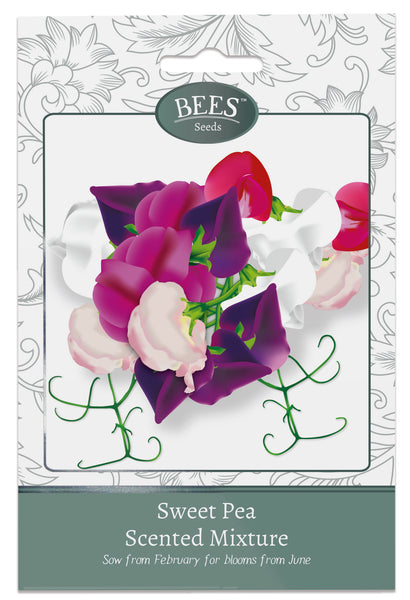 Scented Sweet Pea, Sweet Pea, Sweet Pea Seeds, Cottage garden seeds, Cottage garden plants, Bees Seeds
