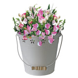 Compact Sweet Pea, Compact Sweet Pea in a Bucket, Sweet Pea Villa Roma, Sweet Pea, Sweet Pea Seed, Scented Sweet Pea, Best Sweet Pea for scent, Gardening gifts, gifts for gardeners, Sweet Pea in a bucket, sweet pea for cutting.