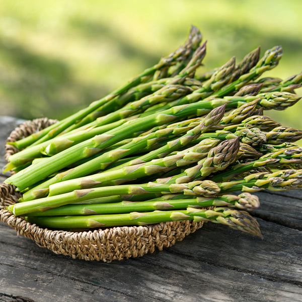 Asparagus Avalim, Asparagus Crowns, How to grow Asparagus, Asparagus plants, Grow Your Own Asparagus, edible plants, allotment growing, kitchen garden, grow your own food, gyo, giy