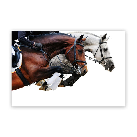 Nordic Modern Horse Wall Art  Decoration