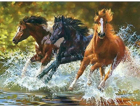 Digital Horse Oil Painting Decoration 40x50cm