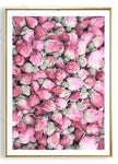 Pink Rose Canvas Paintings Wall