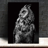 Wall Art Pictures animal canvas painting black and white