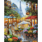 Framed Painting By Numbers Paris Landscape Acrylic 40x50cm