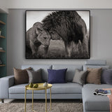 Lions Head to Head Black and White Canvas for Living Room