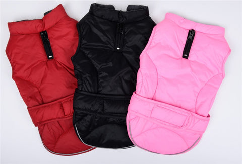 Waterproof Reversible Winter Dog Jacket | XS-XXXL