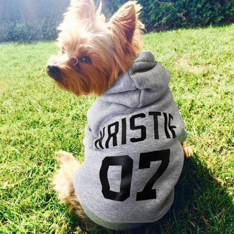 Personalised Pet Hoodie for Large to Small Dogs and Cats