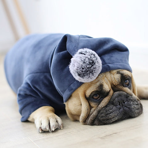 Plush Hoodie for Small/Medium Dogs or Cats -  www.sanroccoitalia.it - Pet products