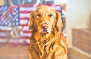 Golden Retriever - majorleaguecreative.com