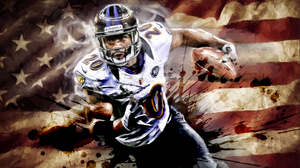"*30x40* Ed Reed: The Ballhawk * LIMITED EDITION * (only 75 released) * 1.5"" Gallery-wrapped - majorleaguecreative.com"