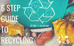 How to Recycle (in 6 Easy Steps)