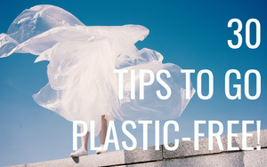 How To Go Plastic-free! (30 Tips for 2019)