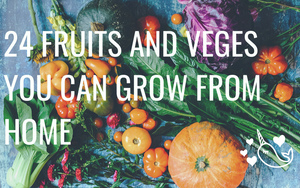 24 Fruits and Vegetables You Can Grow From Scraps at Home