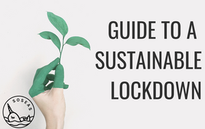 Guide to a sustainable lockdown