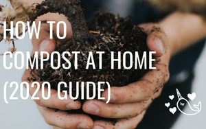How To Compost at Home (2020 Guide)