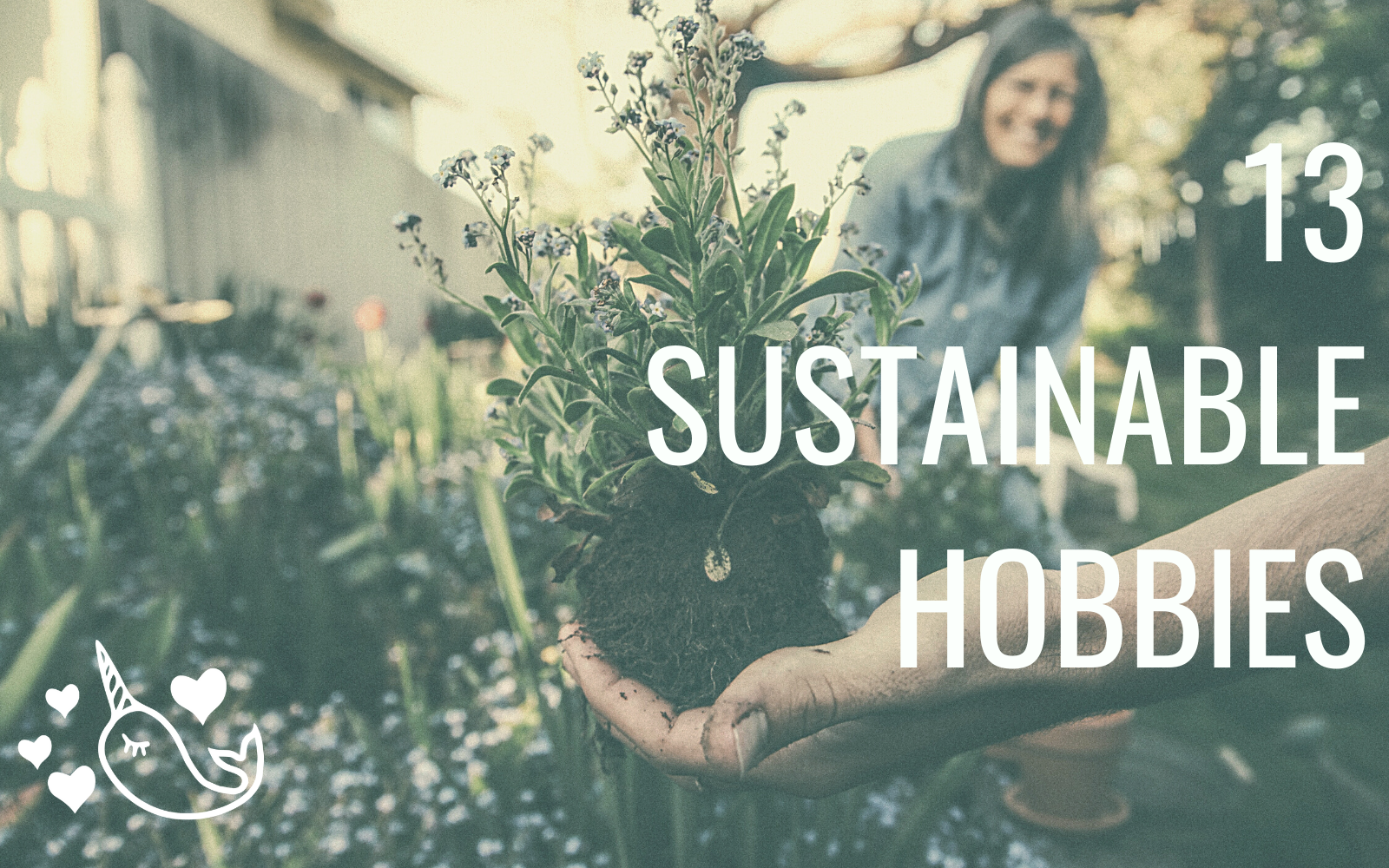 13 Sustainable Hobbies To Make The World A Better Place