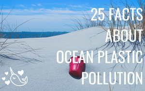 25 Facts about Ocean Plastic Pollution