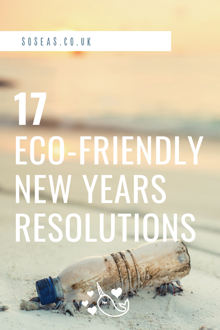 Eco friendly new years resolutions