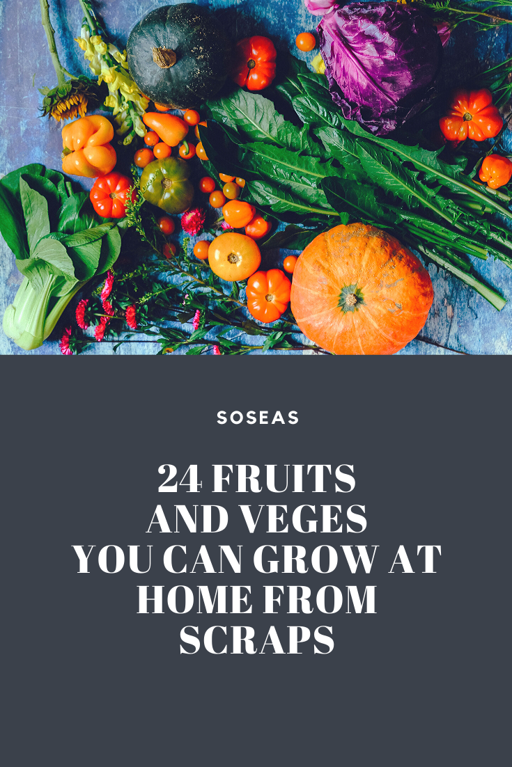 grow fruits and veges at home from scraps