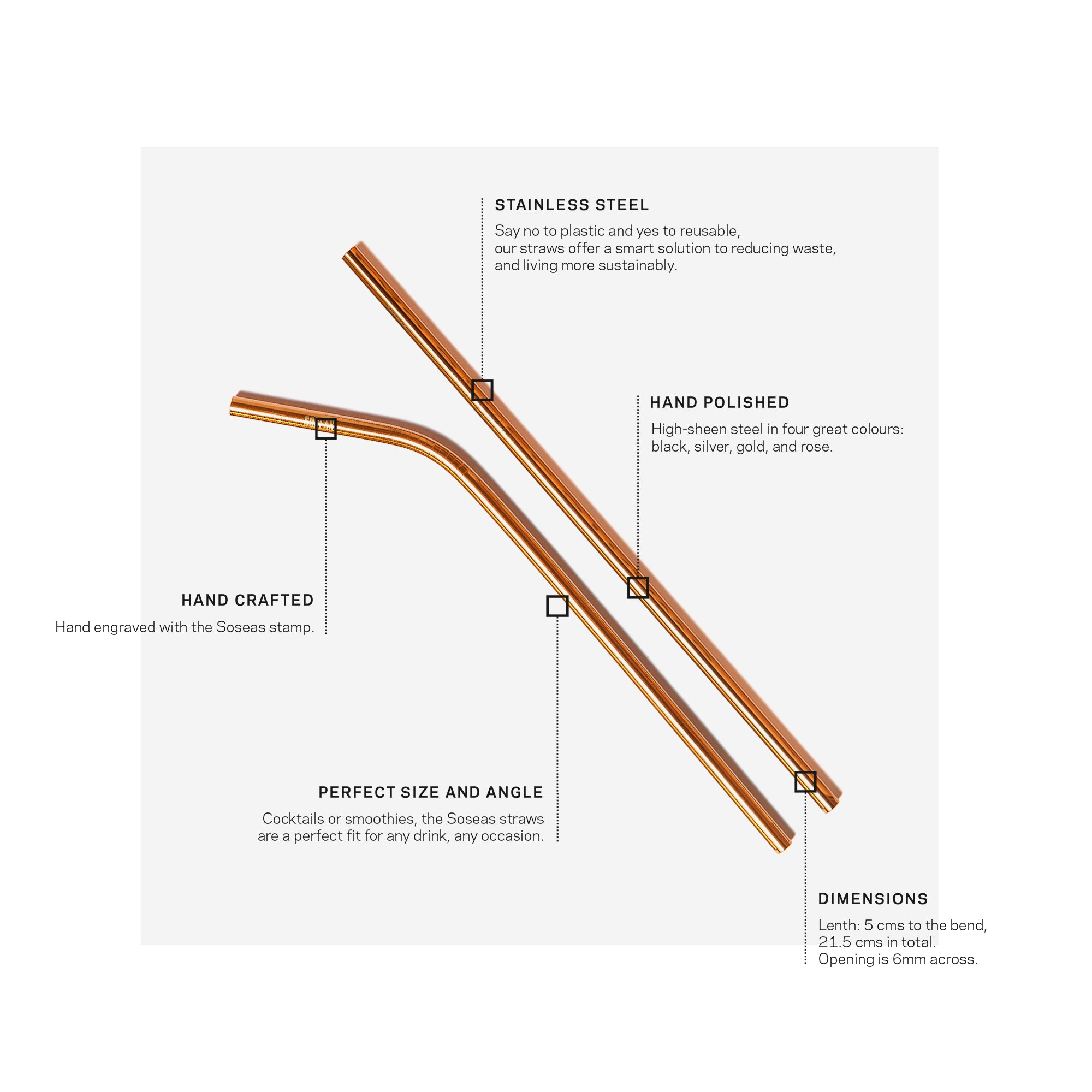 Reusable Stainless Steel Straws Infographic