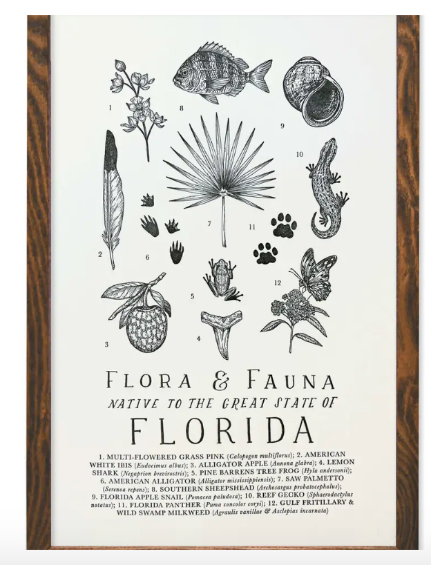 Florida Field Guide Print