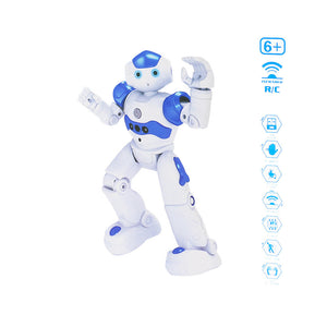 Remote Control RC Robots Interactive Walking Singing Dancing Robotics for Kids