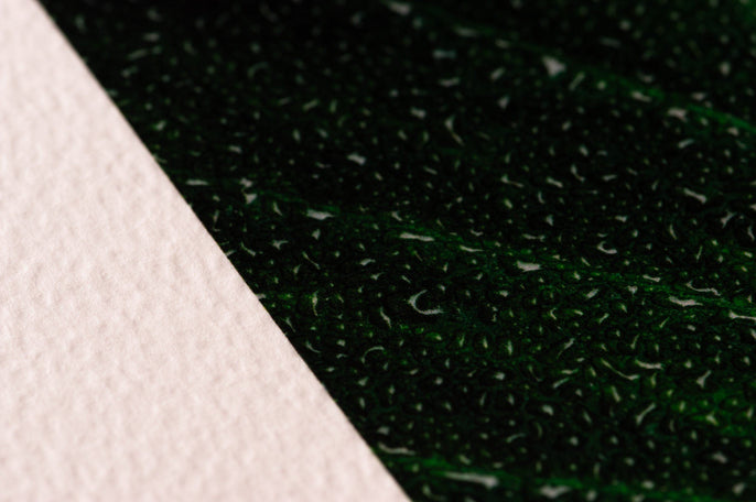 Mint Textured Art Paper BreathingColor