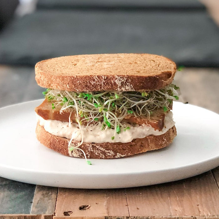The Cannellini Miso Mash Sandwhich overflowing with sprouts on wood dining table