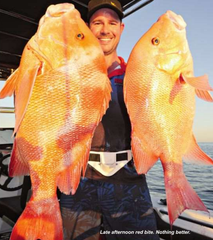 Red Emperor Flasher Rigs